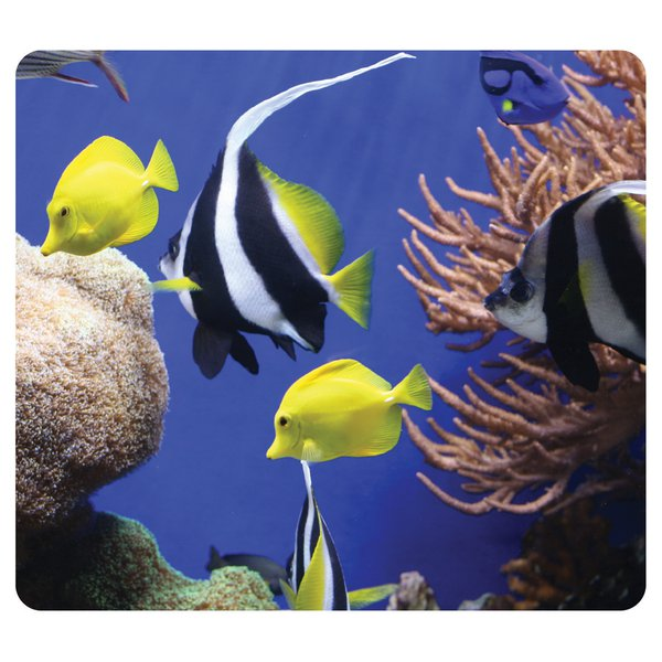 Mousepad ecologici Earth Series Fellowes - sotto il mare - 5909301