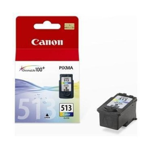 Originale Canon 2971B001 Cartuccia inkjet alta resa Chromalife 100+ CL-513 colore